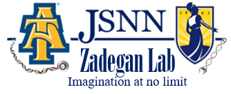 Zadegan Laboratory